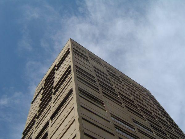 MSJ supreme court